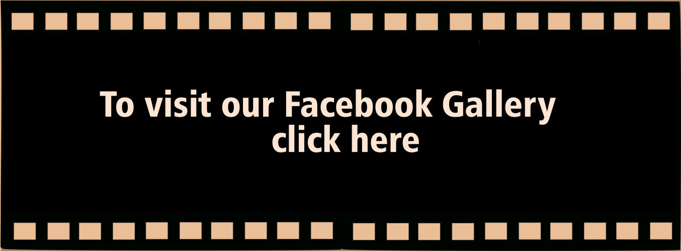 To visit our Facebook Gallery  click here